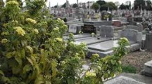 Famous cemetery to be restored as tourist stop